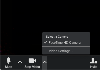 Video settings.png