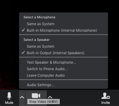 Audio Settings.png