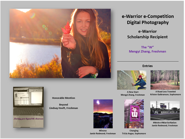 PhotographyEntries2013.png